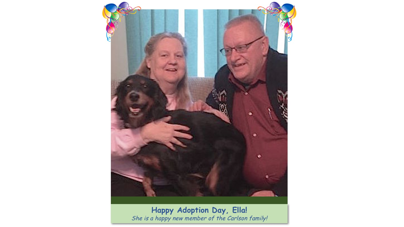 Ella_Adoption_photo.jpg