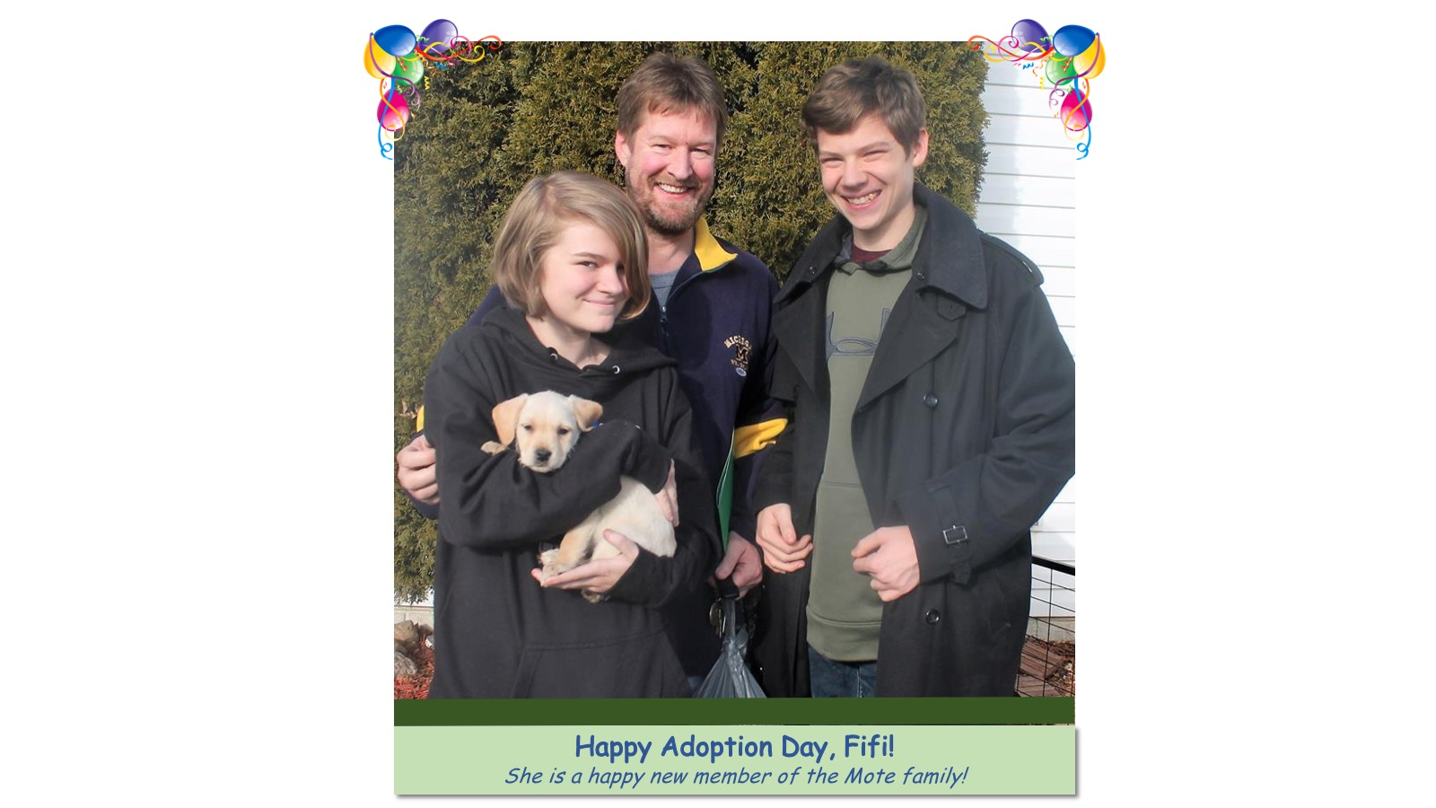 Fifi_Adoption_photo_2018.jpg
