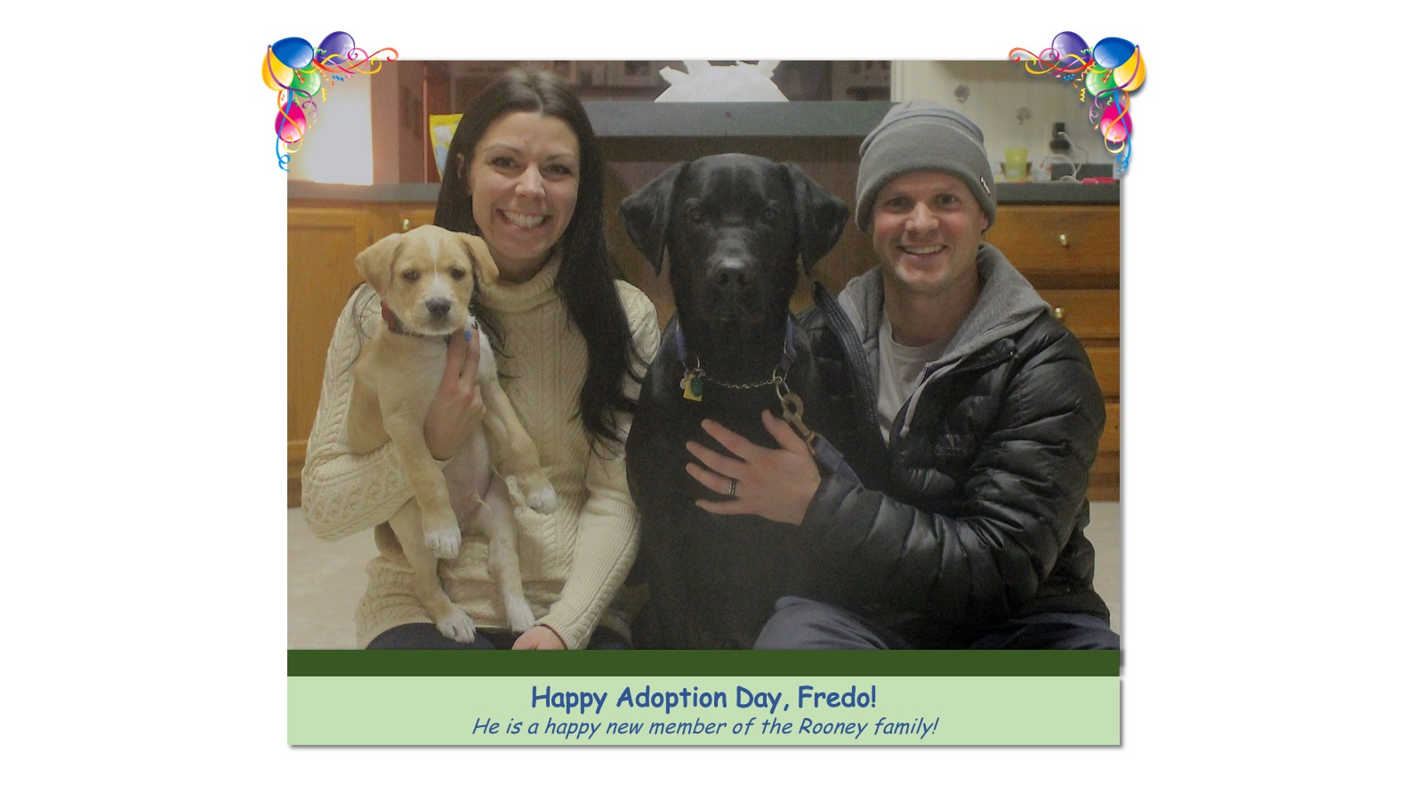Fredo_Adoption_Photo_2018.jpg
