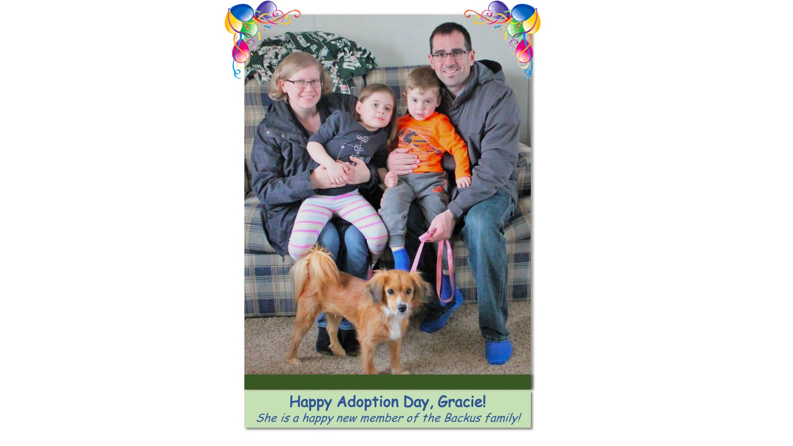 Gracie_Adoption_Photo_2018.jpg