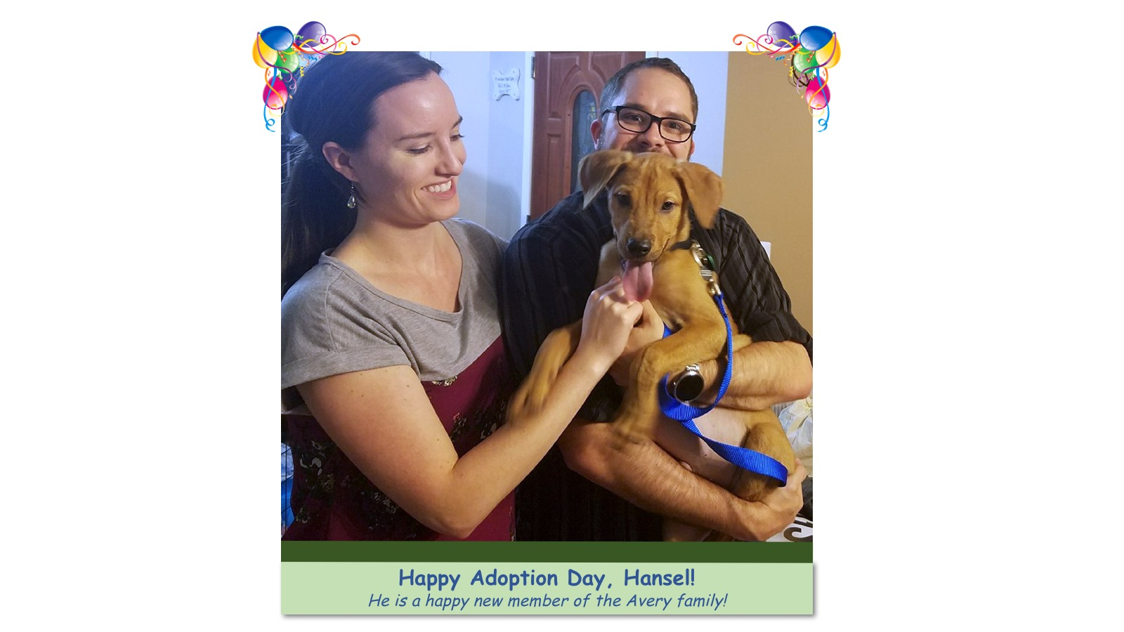 Hansel_Adoption_photo.jpg