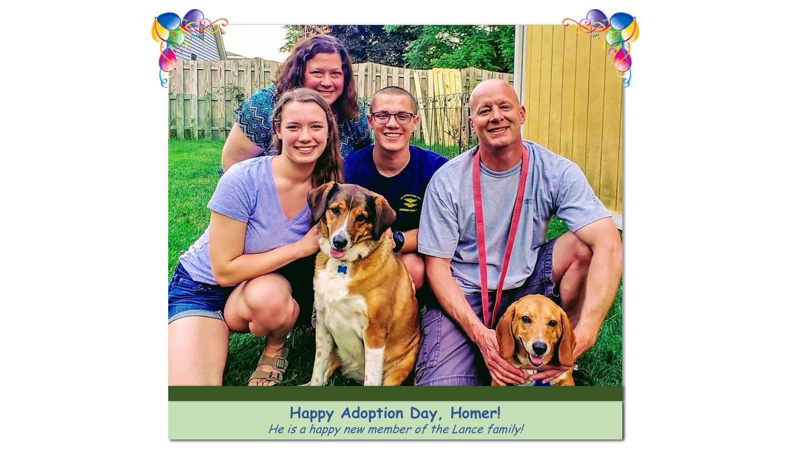 Homer_Adoption_Photo_2018.jpg