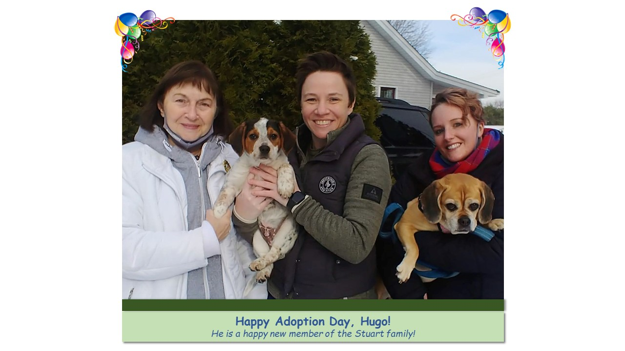 Hugo_Adoption_Photo_2021.jpg