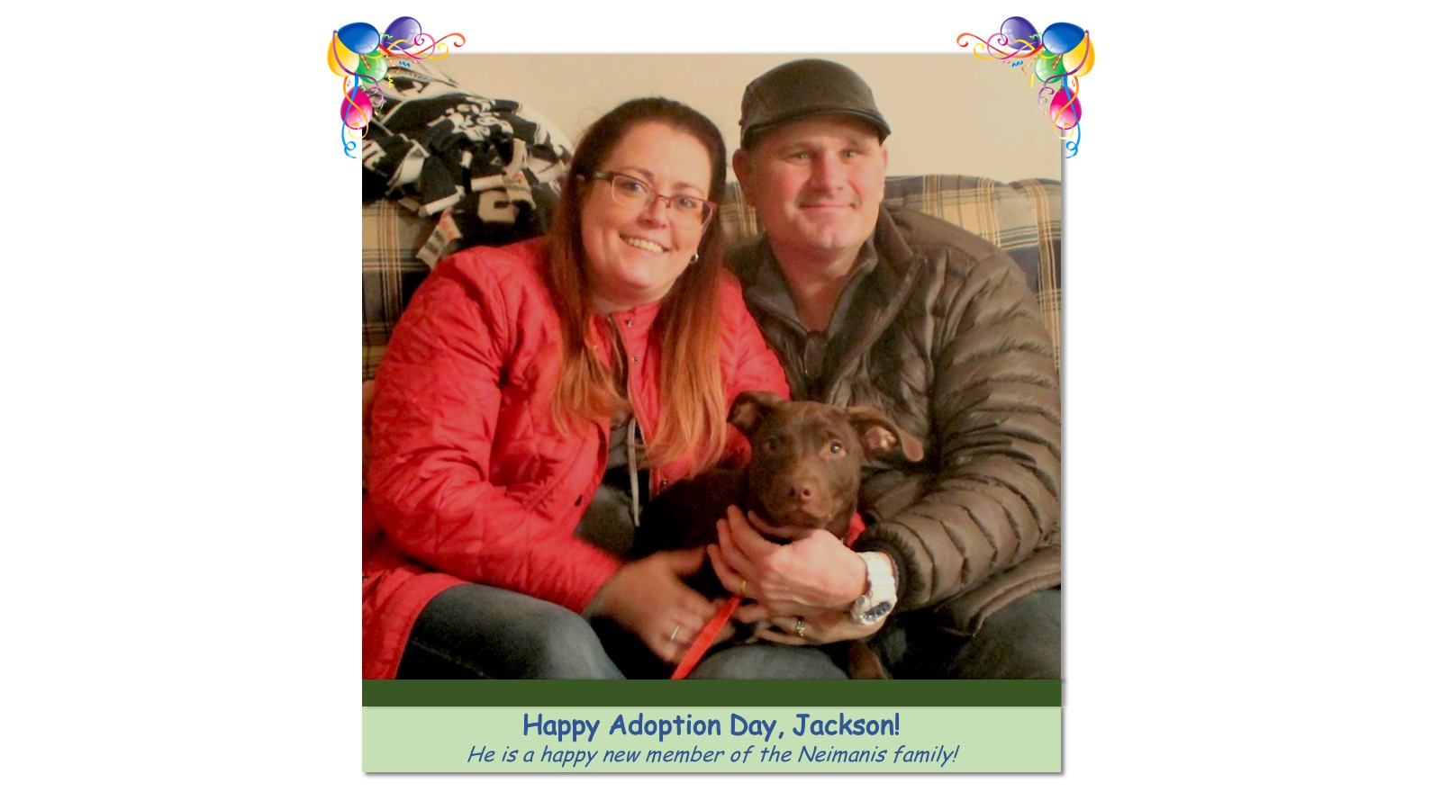 Jackson_Adoption_Photo43661.jpg