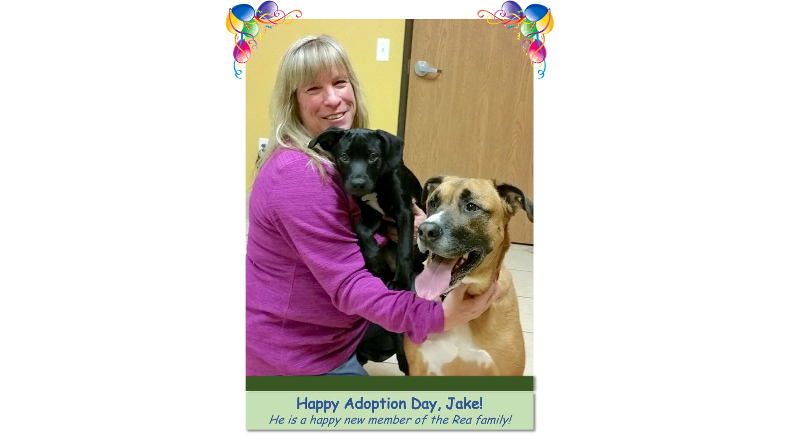 Jake_Adoption_Photo_2018.jpg