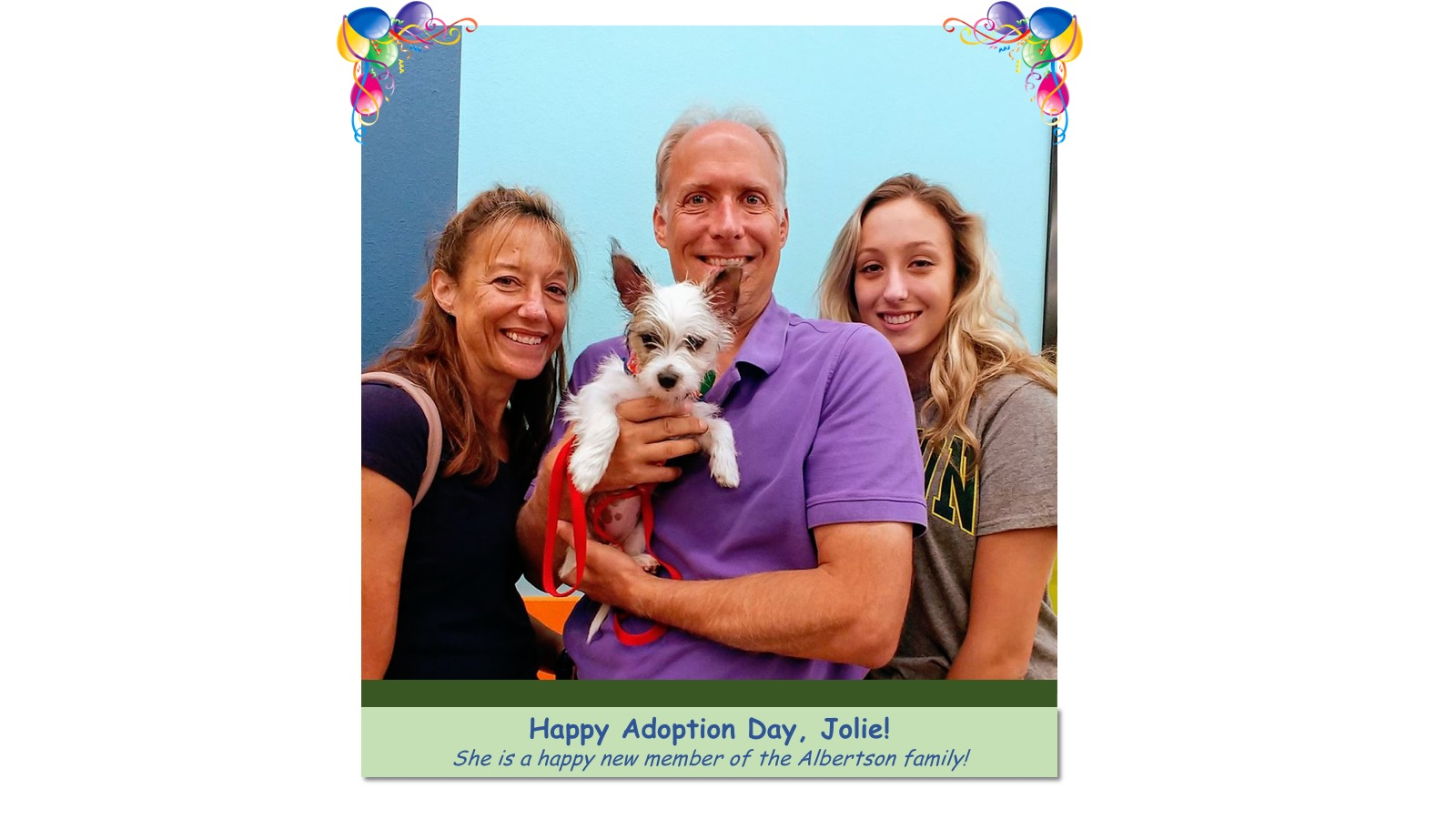 Jolie_Adoption_Photo_2018.jpg