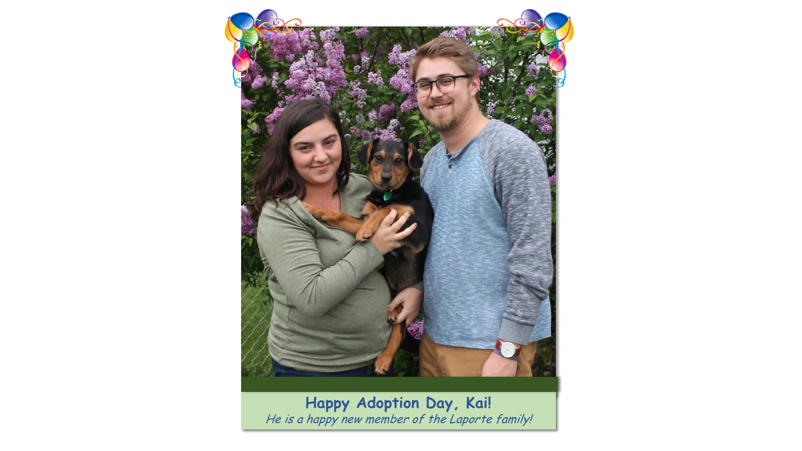 Kai_Adoption_Photo_2018.jpg