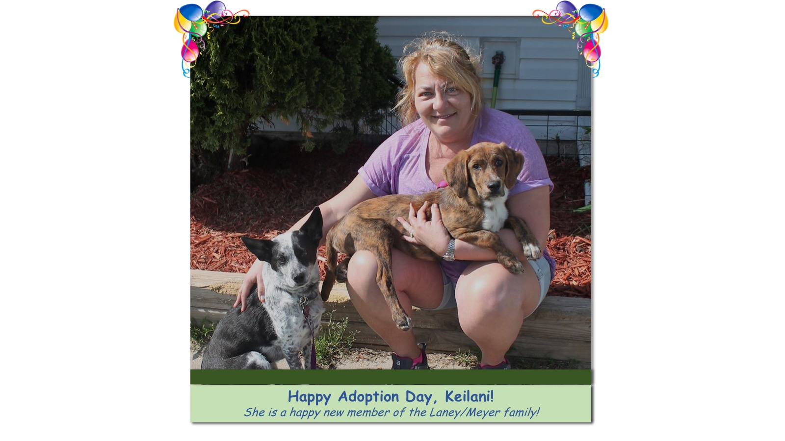 Keilani_Adoption_Photo_2018.jpg