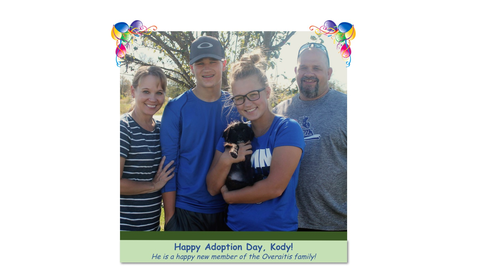 Kody_Adoption_photo63057.jpg