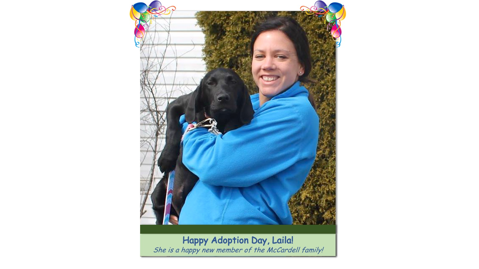 Laila_Adoption_Photo_2018.jpg