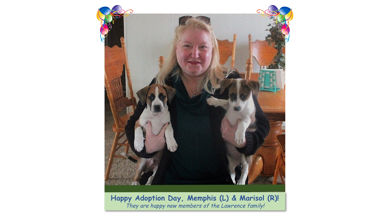 Marisol__Memphis_Adoption_photo.jpg