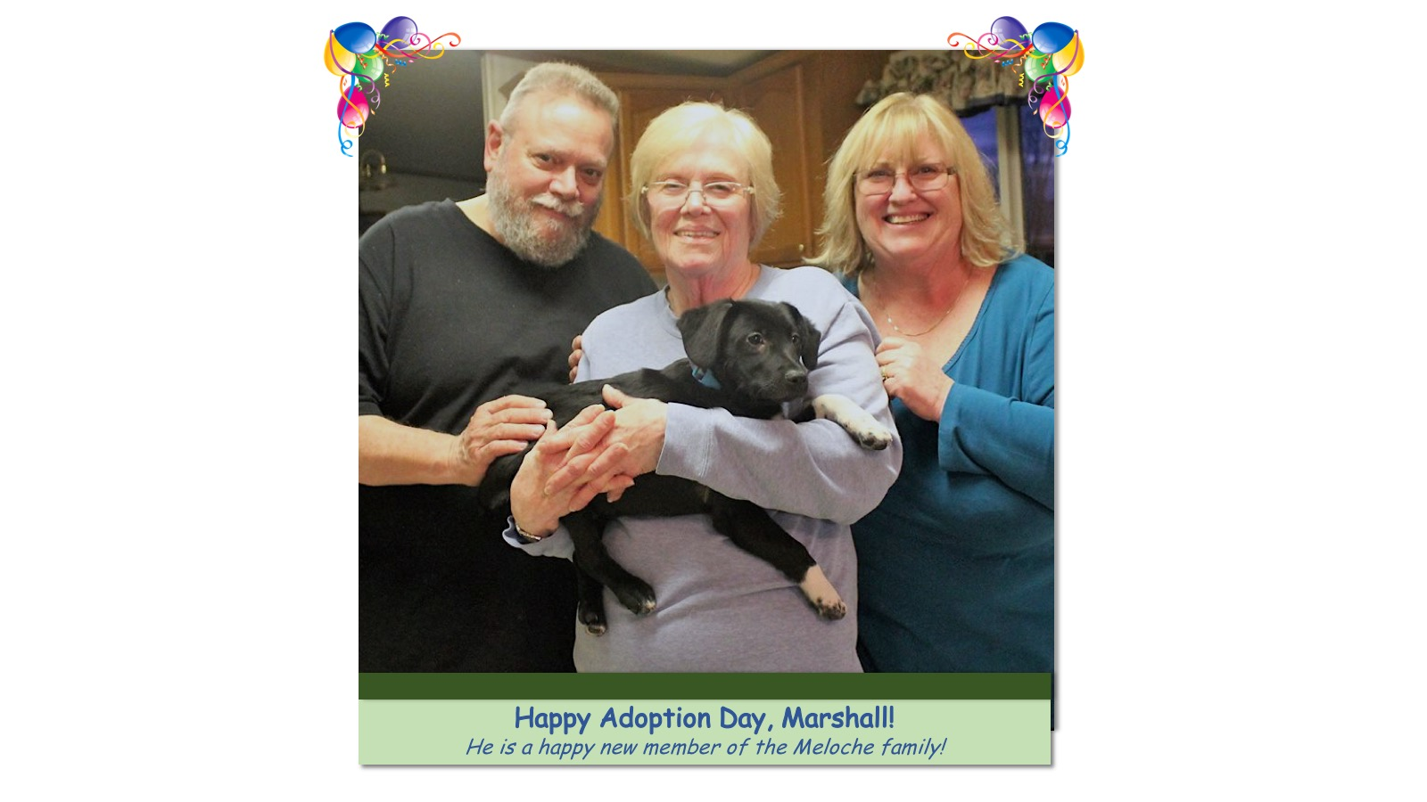 Marshall_Adoption_Photo71638.jpg