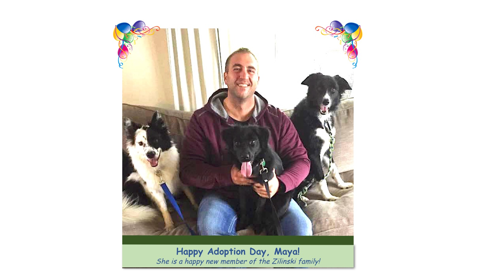 Maya_Adoption_photo.jpg