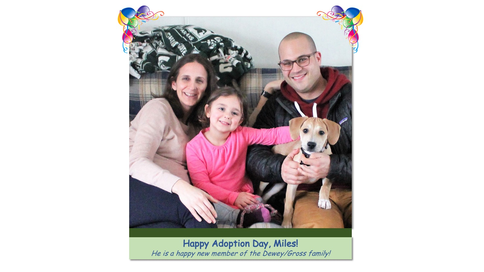 Miles_Adoption_Photo_2018.jpg