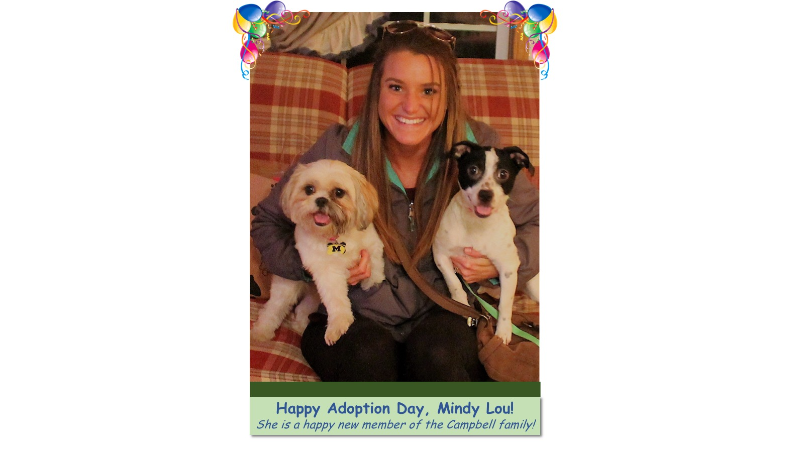 Mindy_Lou_Adoption_Photo_2018.jpg