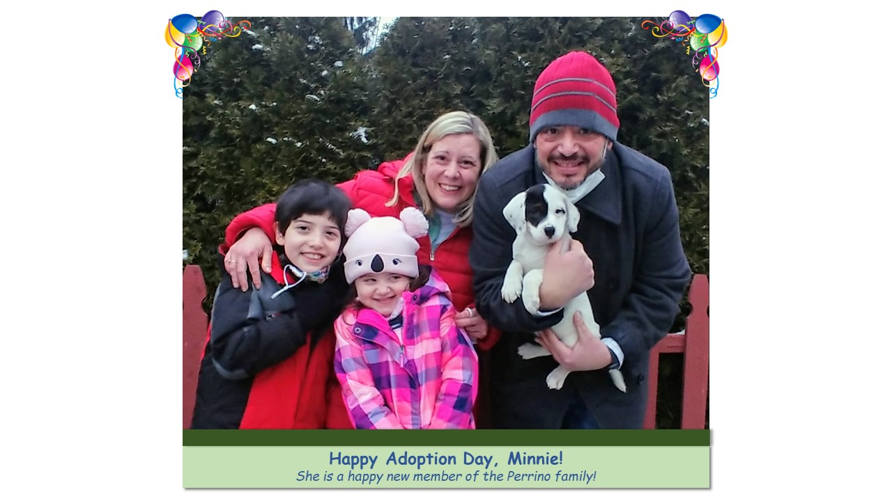 Minnie_Adoption_Photo_2021.jpg