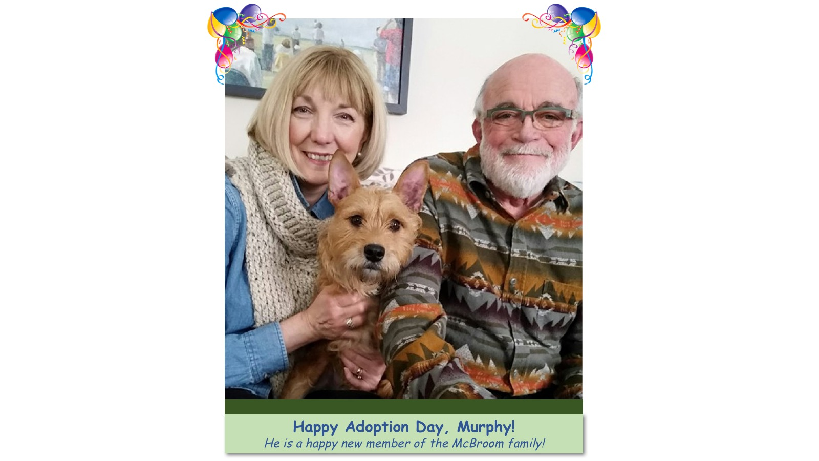 Murphy_Adoption_photo.jpg