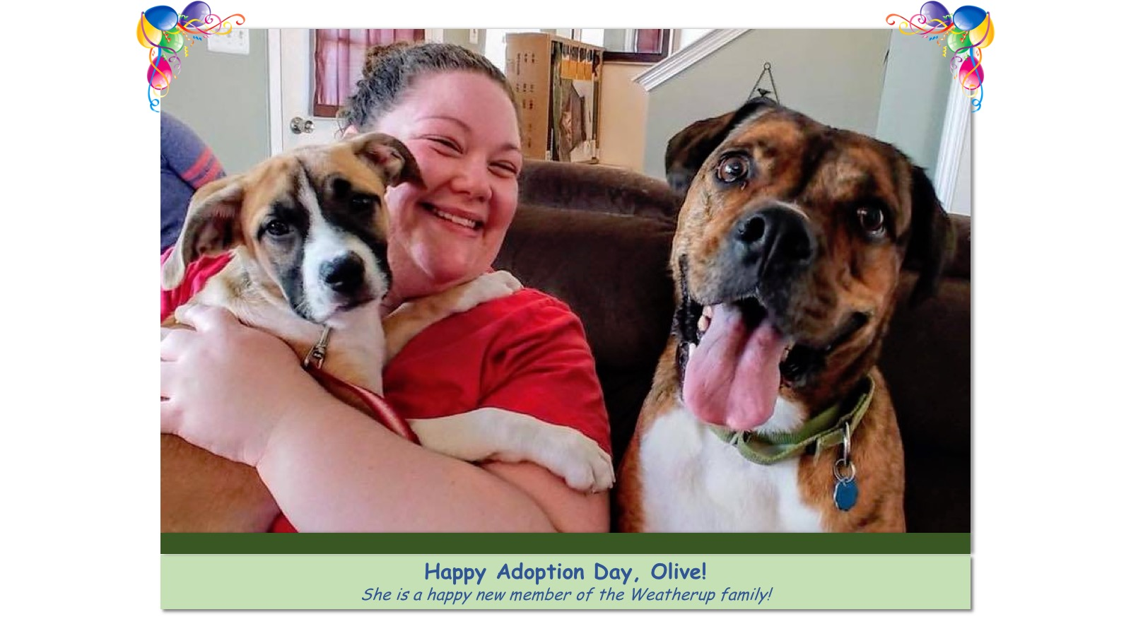 Olive_Adoption_Photo_2018.jpg