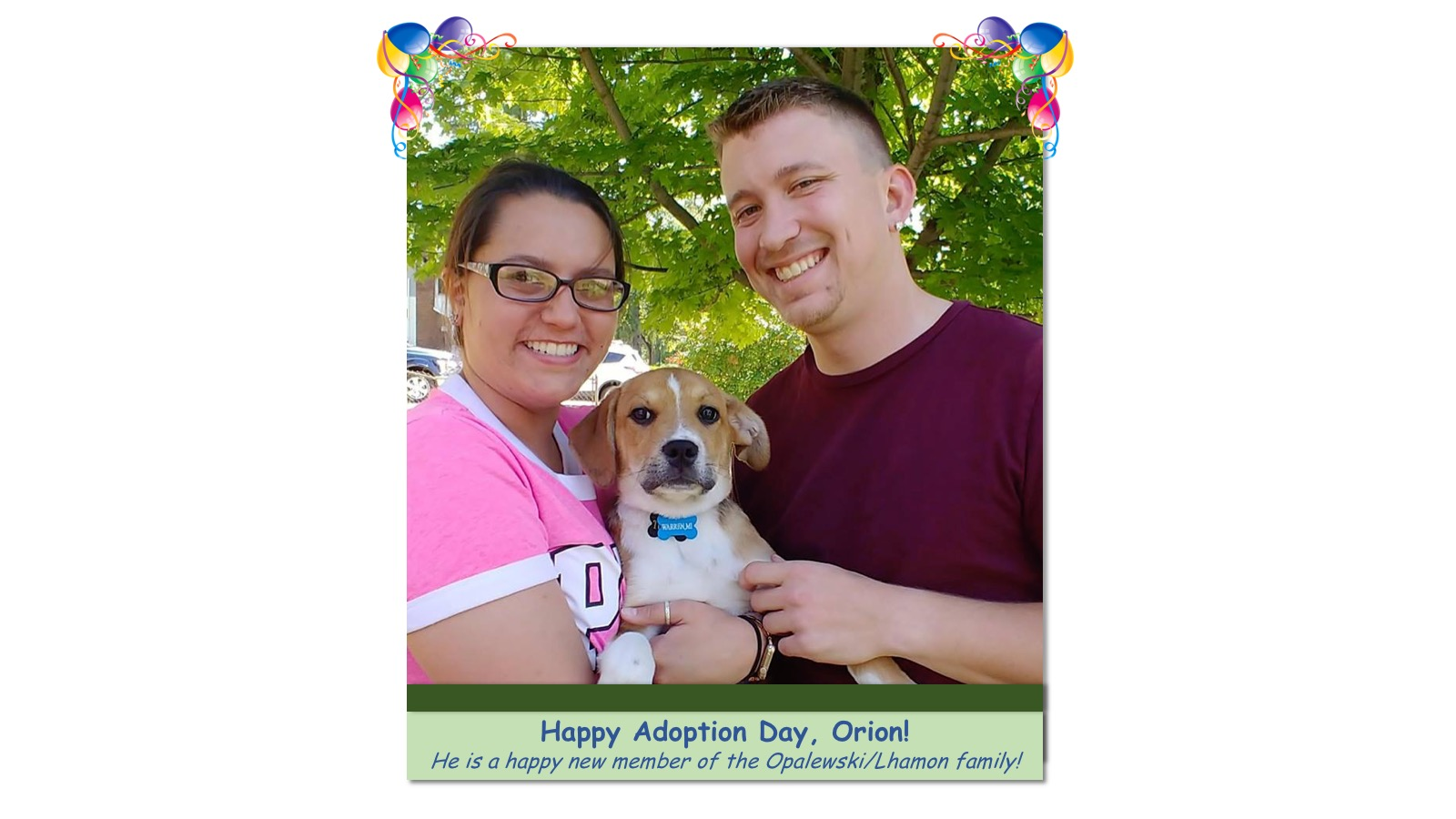 Orion_Adoption_Photo_2018.jpg