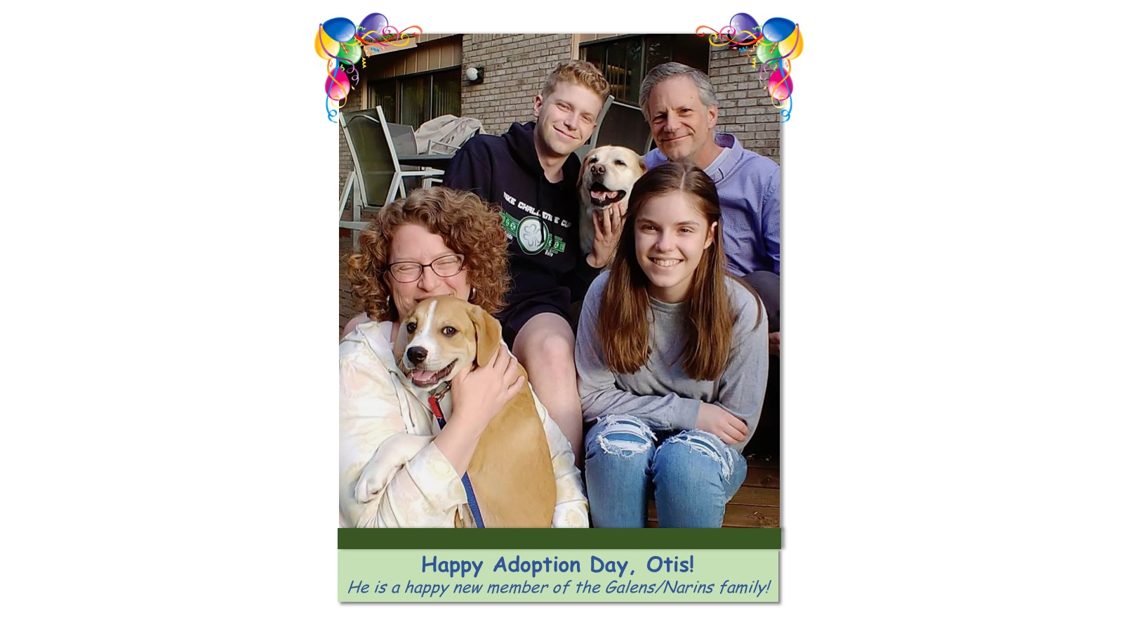Otis_Adoption_Photo_2018.jpg