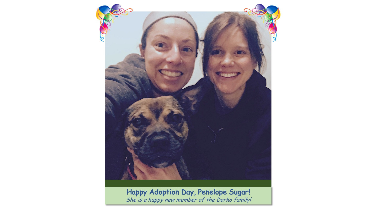 Penelope_Sugar_Adoption_Photo_2018.jpg