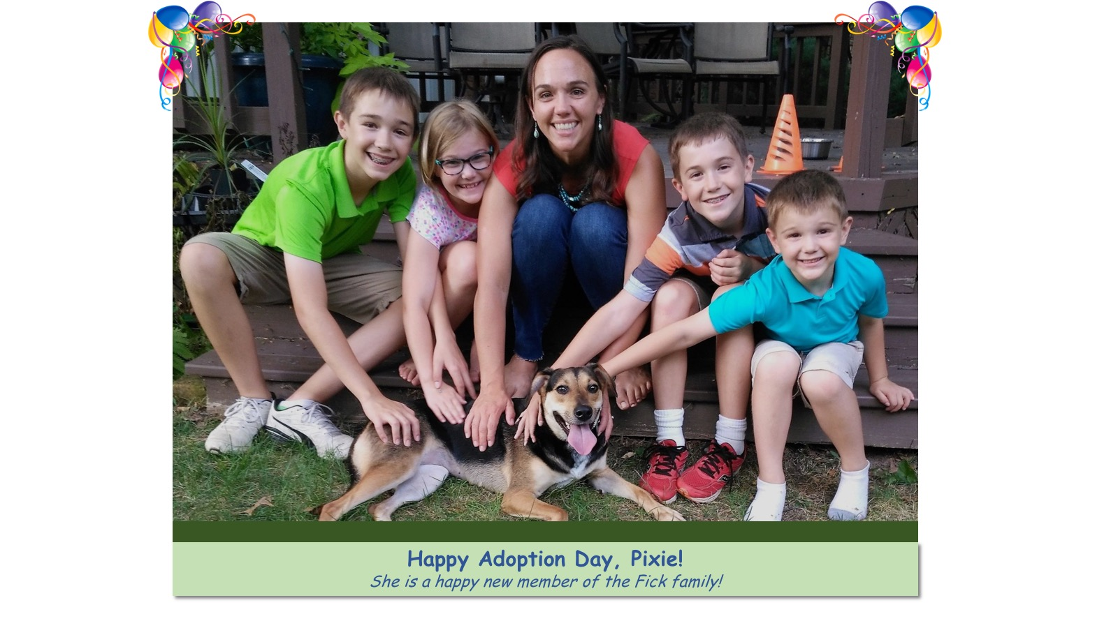 Pixie_Adoption_Photo_2018.jpg