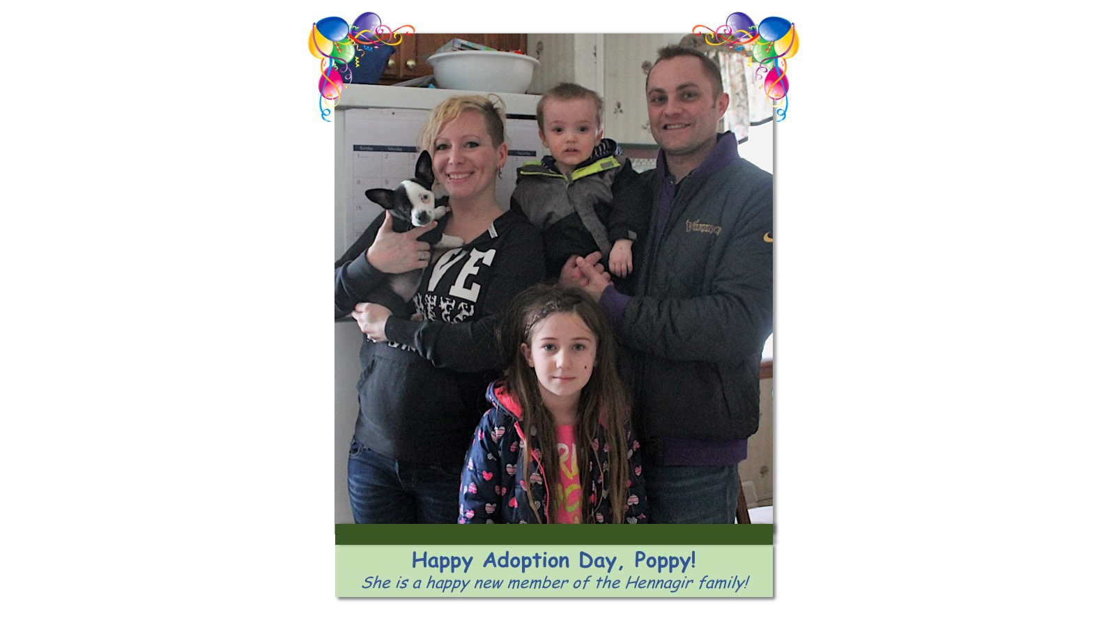Poppy_Adoption_Photo_2018.jpg