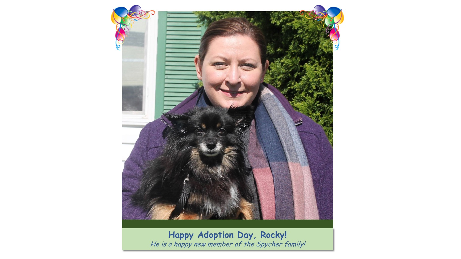 Rocky_Adoption_Photo_2018.jpg