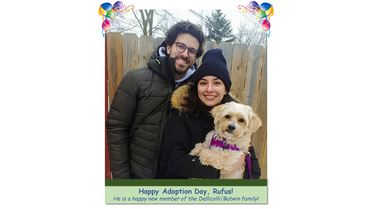 Rufus_Adoption_Photo_2021.jpg