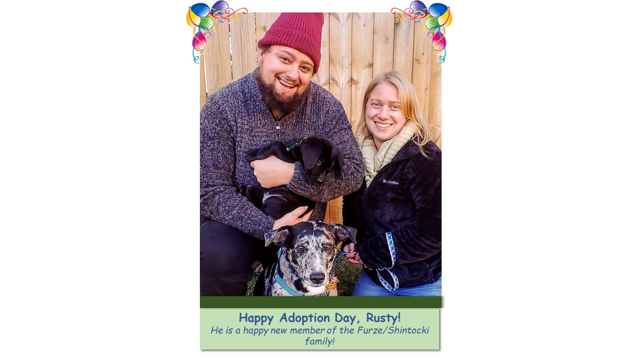 Rusty_Adoption_Photo_2021.jpg