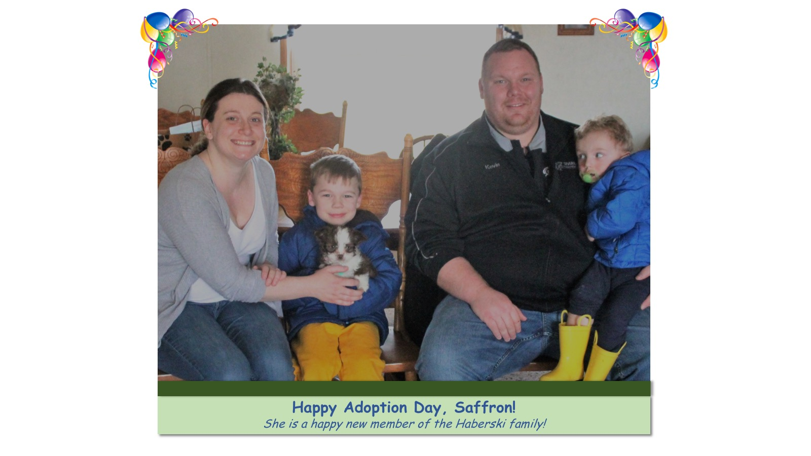 Saffron_Adoption_Photo_2018.jpg