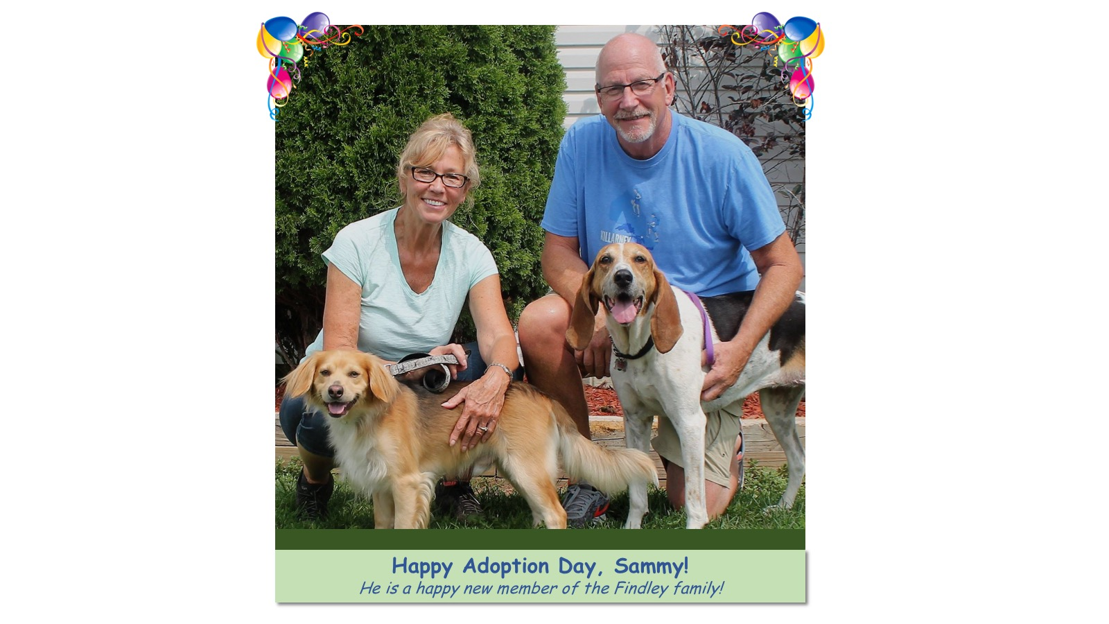 Sammy_Adoption_Photo_2018.jpg