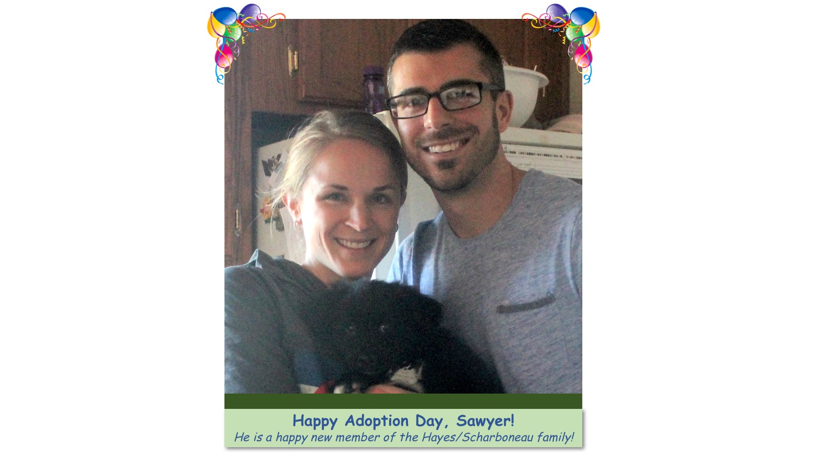 Sawyer_Adoption_photo.jpg