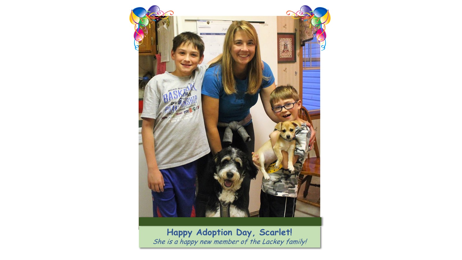 Scarlet_Adoption_Photo_2018.jpg