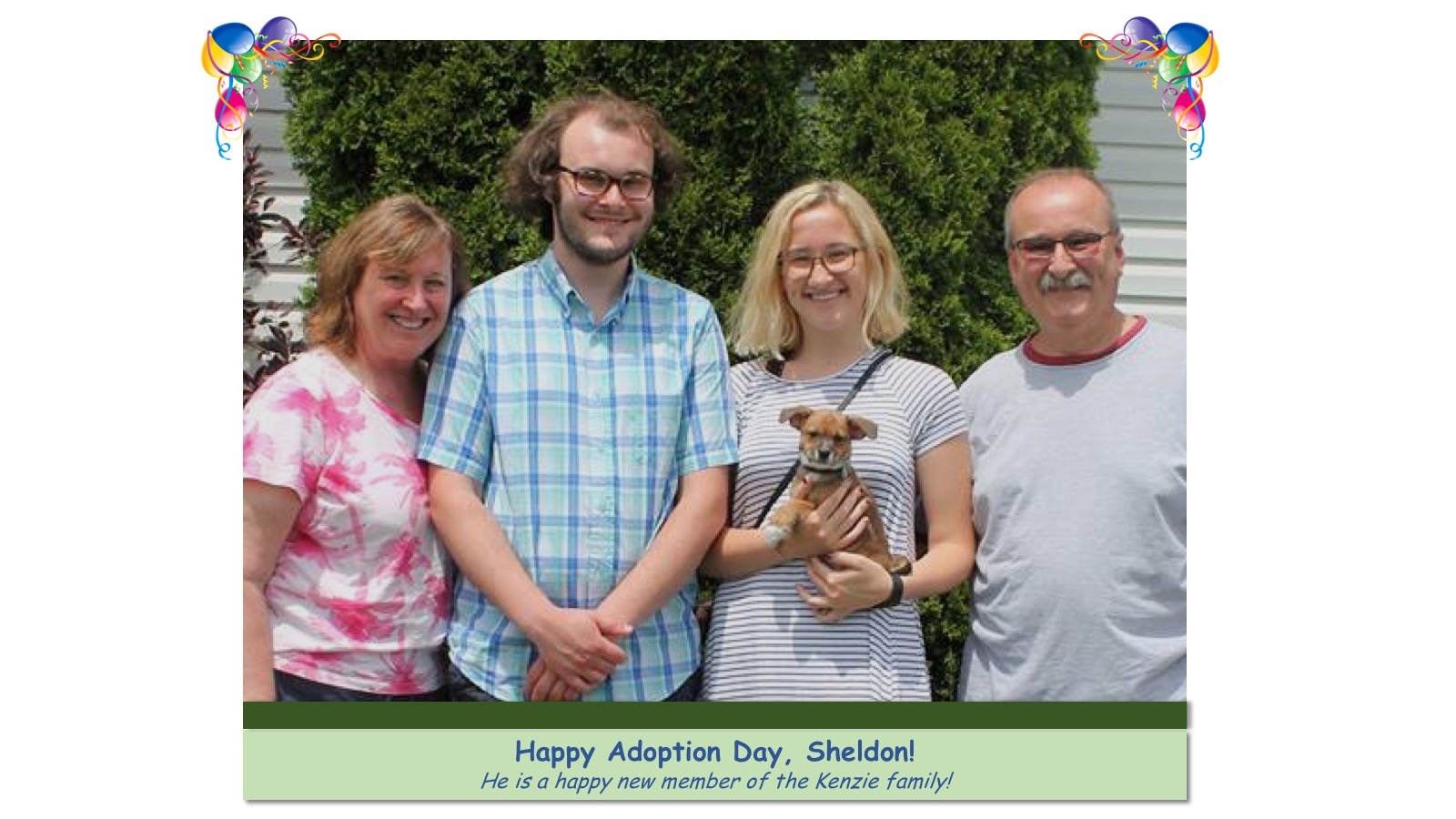 Sheldon_Adoption_Photo71497.jpg