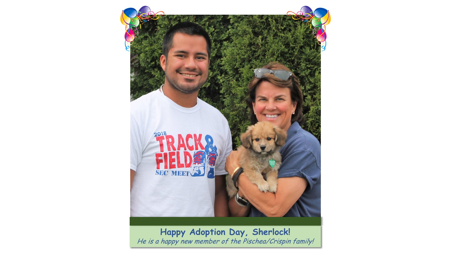 Sherlock_Adoption_Photo_2018.jpg
