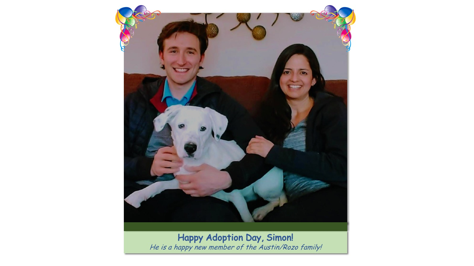 Simon_Adoption_Photo32693.jpg