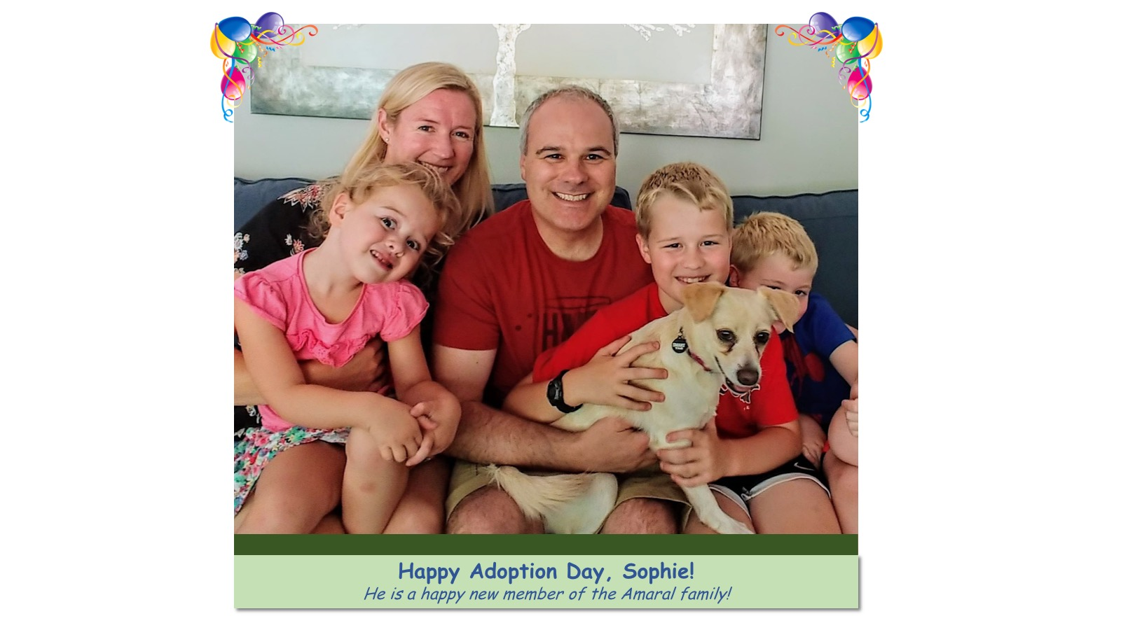 Sophie_Adoption_Photo_2018.jpg
