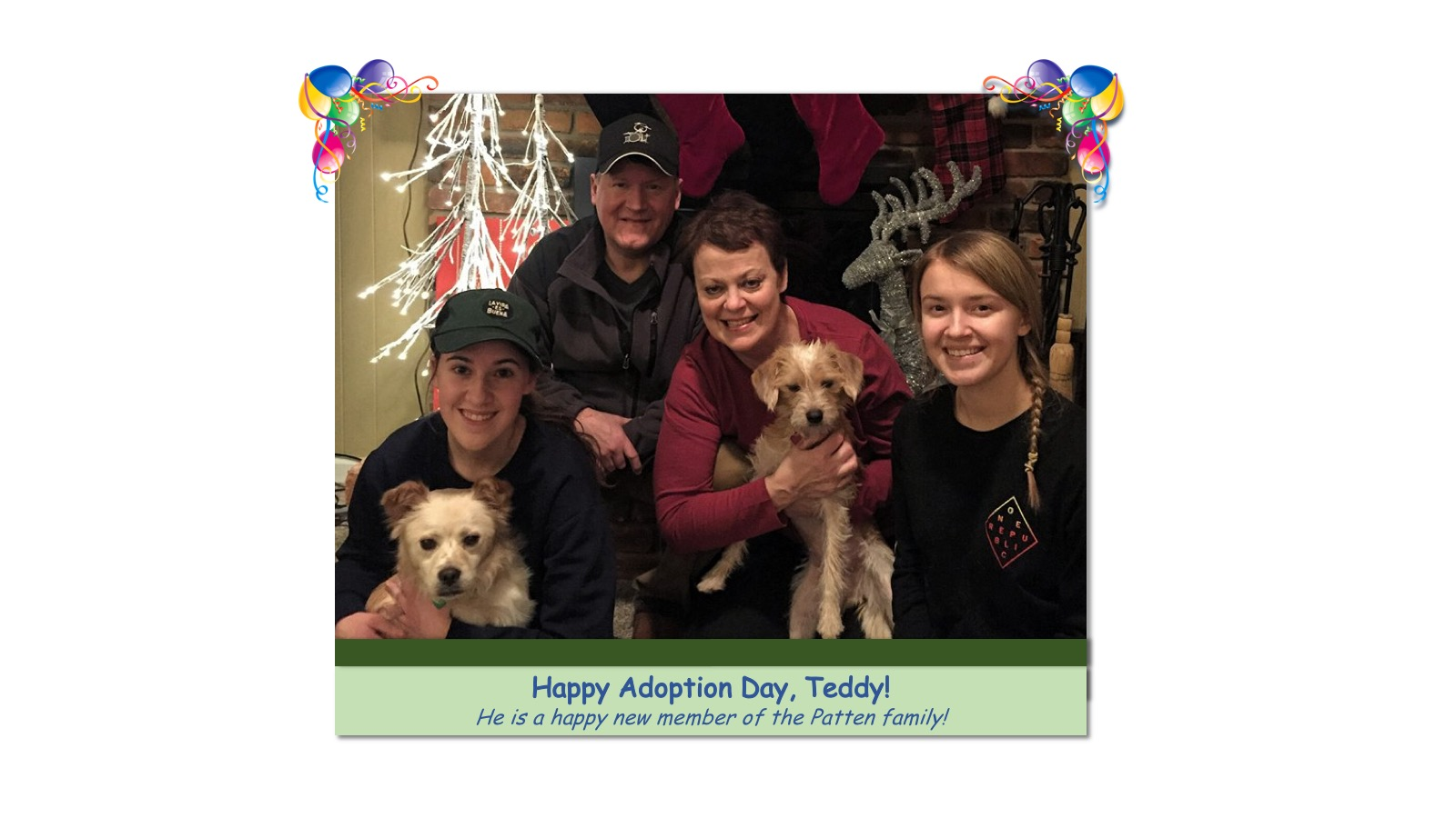 Teddy_Adoption_Photo_2018.jpg
