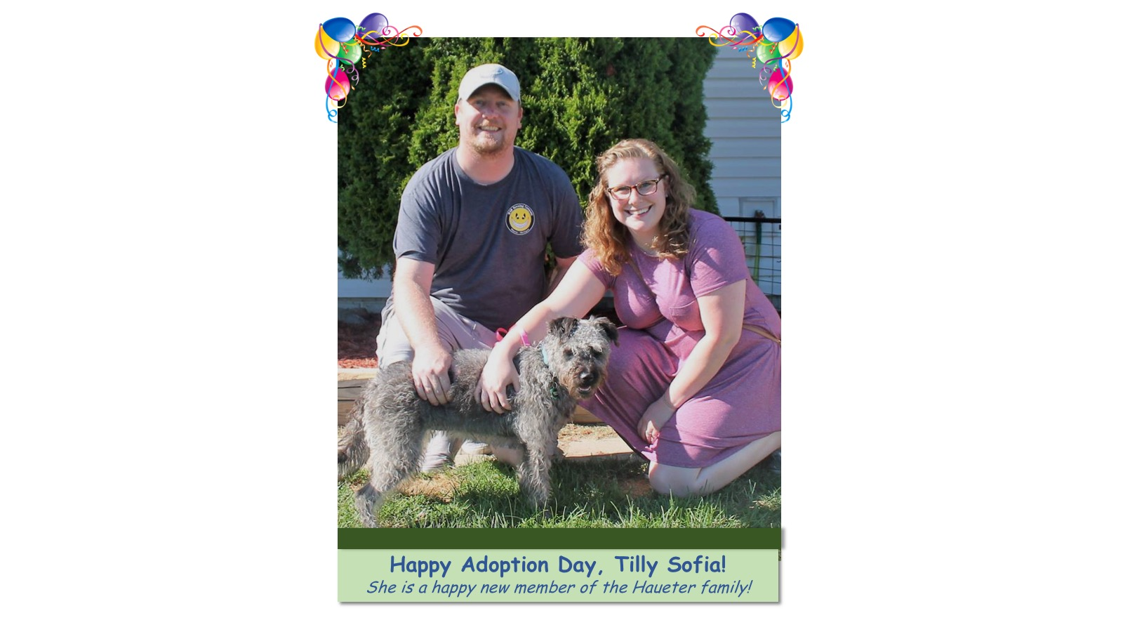 Tilly_Sofia_Adoption_Photo_2018.jpg