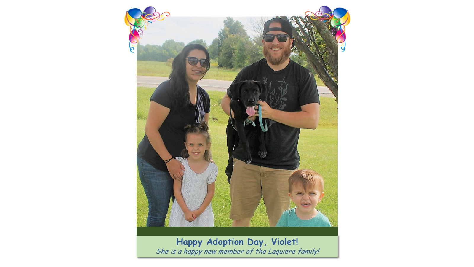 Violet_Adoption_Photo_2018_.jpg