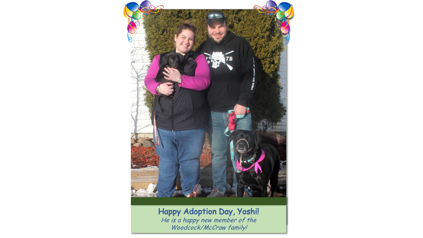 Yoshi_Adoption_Photo_2018.jpg