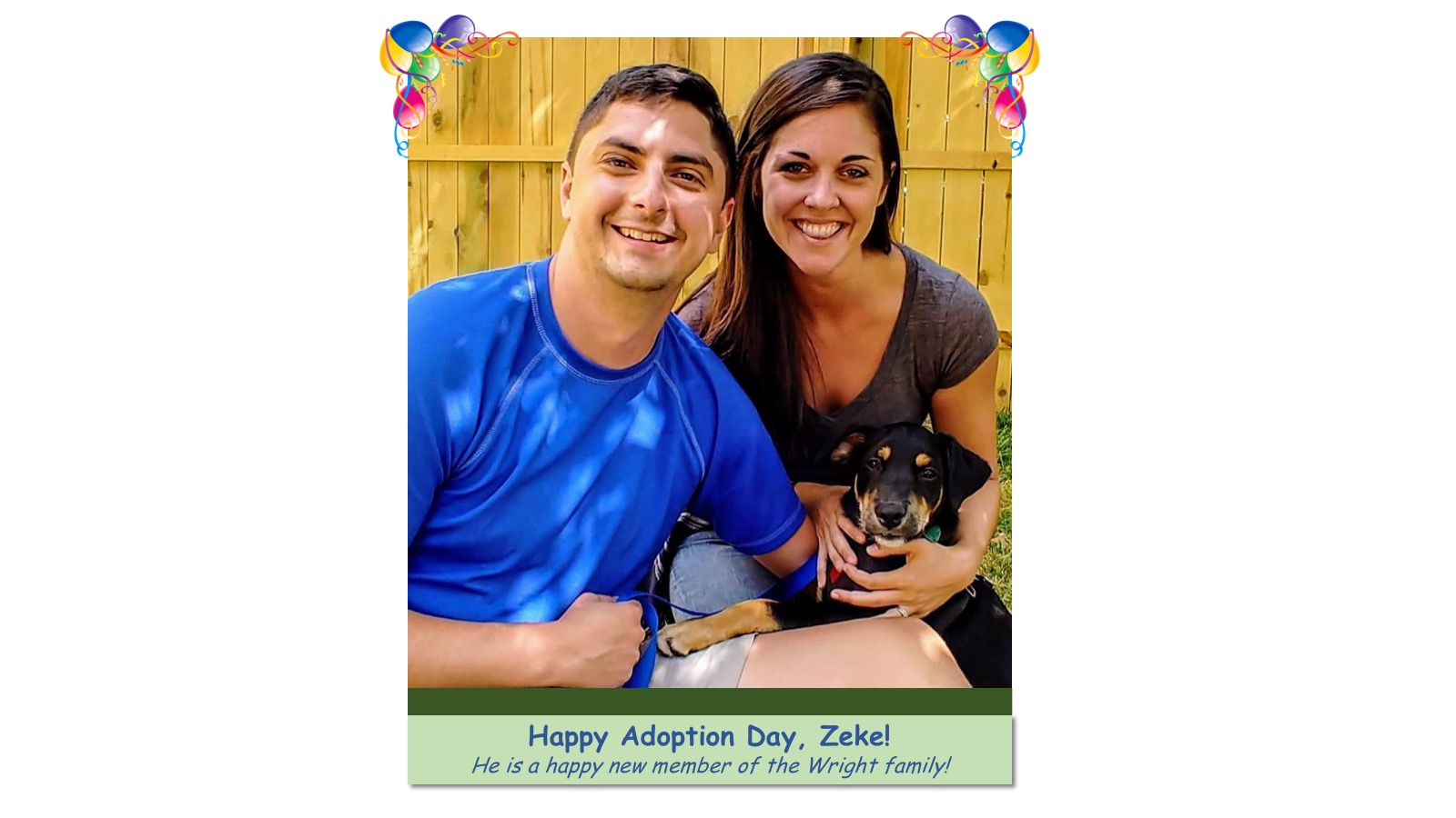 Zeke_Adoption_Photo_2018.jpg