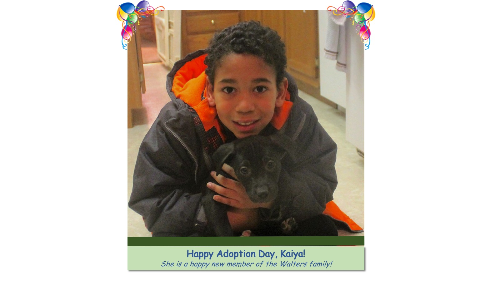 bbwdr_Kaiya_Adoption_Photo56871.jpg