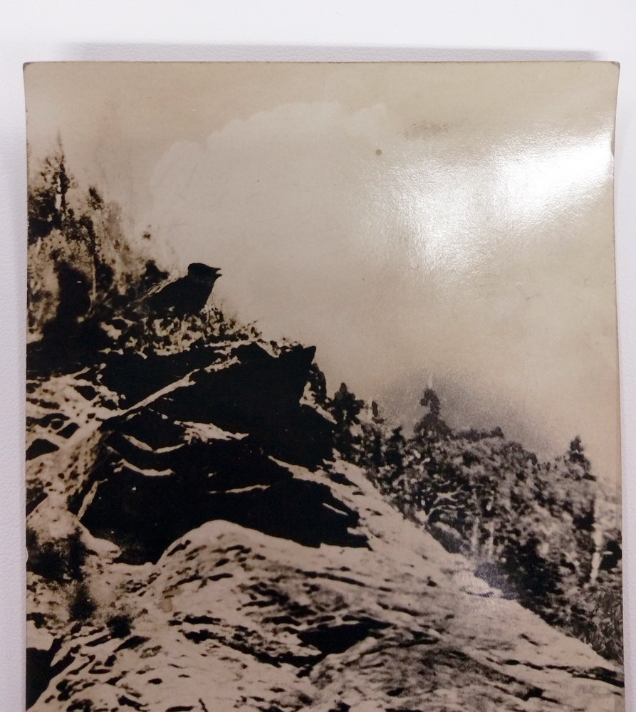Richardson RPPC Post Card Singing Bird at Smugglers Notch Vermont #1054 - $28.00 USD