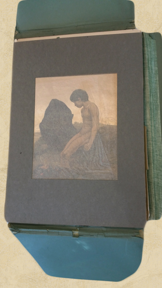 Rare Complete Detmold 16 Illustrations of Subjects from Kiplings Jungle Book, Macmillan 1903 - $6,800.00 USD