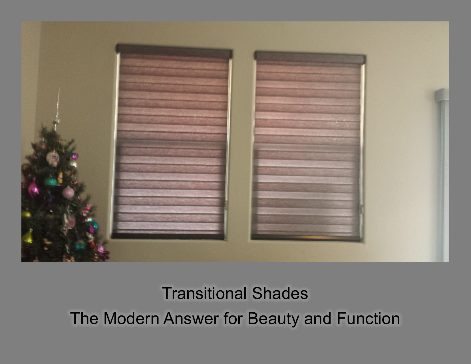 Transitional_Shades_1.jpg